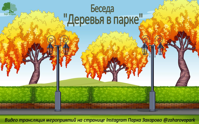 """Экскурсия """" Деревья в парке"""