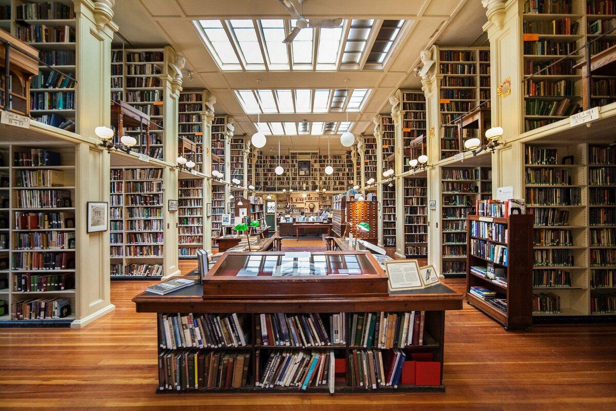 «Праздничное открытие летнего читального зала 2020»  «Библиоканикулы»